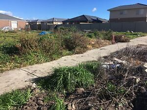 Mr Singh rubbish removal and lawn mowing Brighton Bayside Area Preview