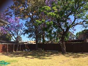 SHARED ACCOMMODATION, SUITABLE FOR STUDENTS AND GROUPS OF FRIENDS Glenfield Campbelltown Area Preview