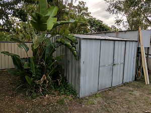 Garden shed Camira Ipswich City Preview