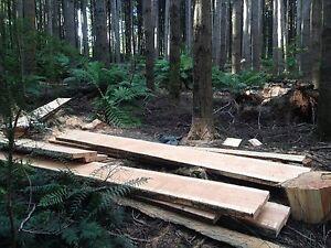 Douglas fir / Oregon slabs Cygnet Huon Valley Preview