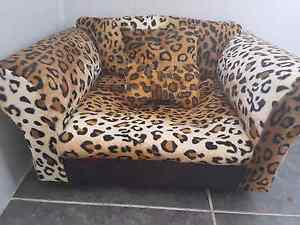 Leopard print cat arm chair bed Kingston Logan Area Preview