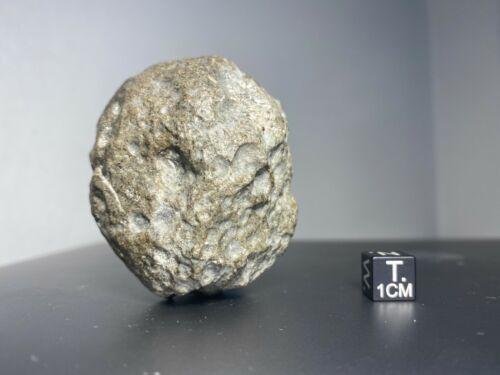 Meteorite - Eucrite- NWA 14131 - 182 grams