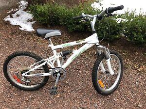 20 inch mountain bike kids