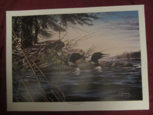 LOON wildlife art print MINNESOTA MEMORIES II - Dean Johnson - Unsigned