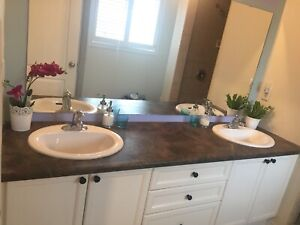 Double sink vanity top or can be cut to singles