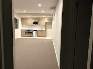 Room for rent in Westmead