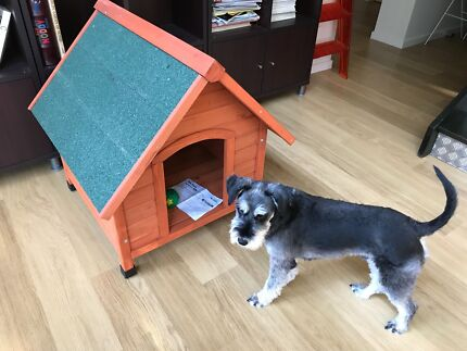 small dog kennel never used assembled