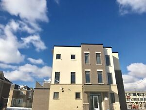 Brand New Executive corner townhouse For Rent