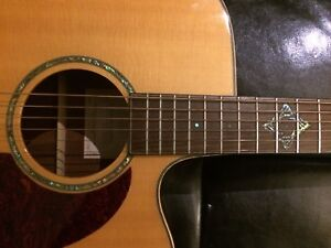 Takamine rosewood cutaway with TP-4T preamp