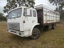 MASSIVE PRICE REDUCTION - 1980 ACCO 1730/C CATTLE TRUCK Gin Gin Bundaberg Surrounds Preview