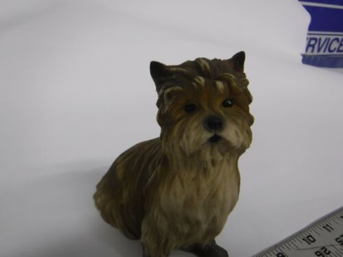 Yorkshire Terrier Yorkie Dog Faro By Roman