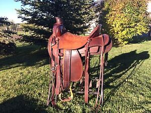 17inch custom saddle.  Your horse will look awesome