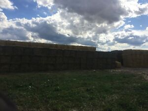 2nd cut alfalfa timothy hay for sale