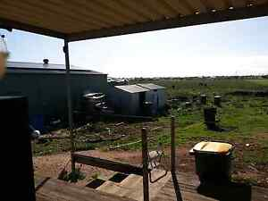 Home on 20 acres Tailem Bend The Coorong Area Preview