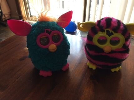 Two furbys Terrigal Gosford Area Preview