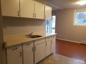 Great Value!!  2 Bedroom Apartment  Available December&January