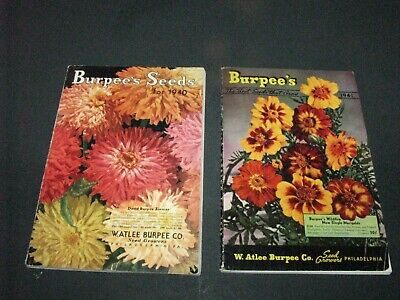 VTG BURPEE SEED PLANT ADVERTISING CATALOGS 1940-41 FLOWERS VEGGIES COLORFUL