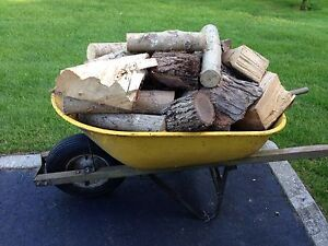 Well Dried Camp Firewood