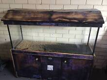 200Litre Fish Tank with lid. Bundall Gold Coast City Preview