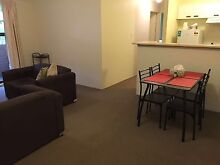 one bedroom for single girl Blacktown Blacktown Area Preview