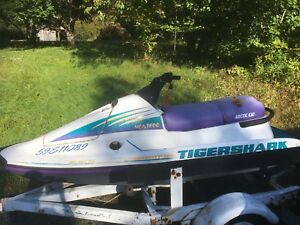 1994 tigershark 640cc with trailer