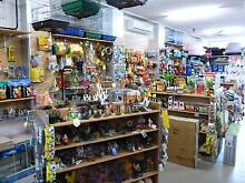 Pet Shop - Pets & Quality Pet Supplies & Accessories Nambour Maroochydore Area Preview