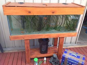 Fish tank (4ft - 220L), canister filter, stand and accessories Willetton Canning Area Preview