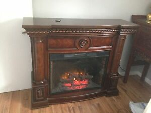 Electric fireplace and heater
