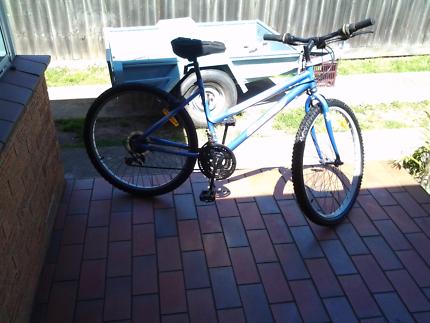 Maintain bike for sale