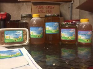 Honey 1kg | Kijiji in Ontario  - Buy, Sell & Save with