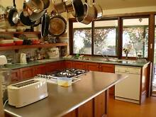 IMMACULATE HOUSE CLEANER & ORGANISER NOW AVAILABLE Armidale 2350 Armidale City Preview