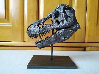 17CM,Dinosaur model / T-REX Skull Small Model B-DZB1802 for sale  Shipping to Canada