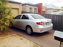 2010 Toyota Corolla Automatic Sedan in excellent condition Paradise Campbelltown Area Preview