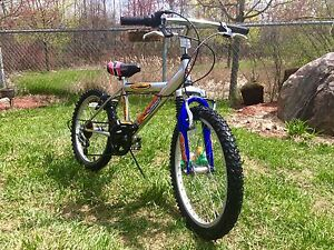"""20"""" 6 Speed Bicycle 