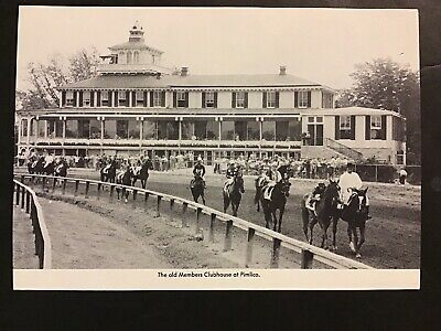Horse Racing Photo (PIMLICO RACETRACK Photo Horse Racing)