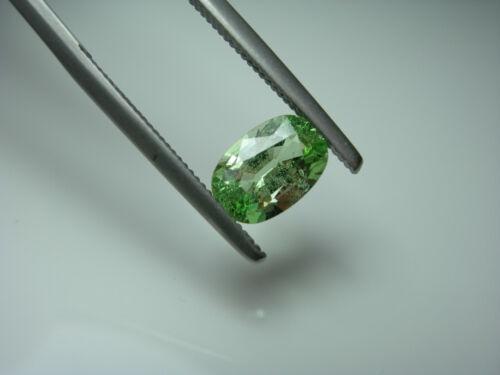 1.48ct very rare Merelani Mint Garnet gem Green FLUORESCENT Tanzania Grossular