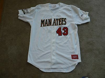 9f61bb005 2016 Brevard County Manatees Game Used Jersey  43 Milwaukee Brewers