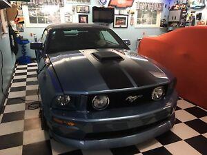 2007 GT mustang custom