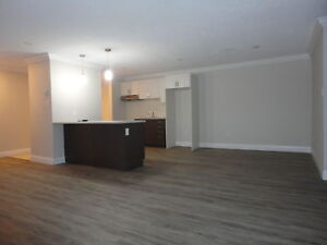 Seeking Professionals!  New Fully Renovated Large 2 Bedroom Unit