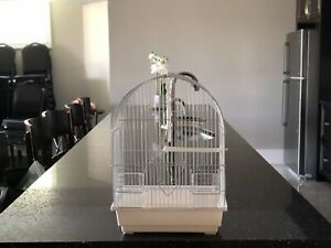BRAND NEW SMALL BIRD CAGES .