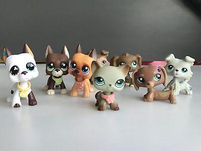 8lot Littlest Pet Shop LPS Short Hair Cat Collie Great Dane Dog Authentic Rare