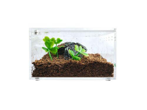Herpcult Acrylic Reptile Terrarium Gecko Lizard Spider Vivarium Enclosure Tank