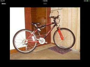 "WANTED:  mountain bike 20"" frame for under $200"