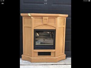 Foyer électrique avec vrai chaleur réglable et fausses