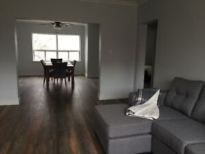 NEWLY RENOVATED LARGE FURNISHED APARTMENT