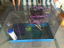 Mouse/rat cage Old Noarlunga Morphett Vale Area Preview