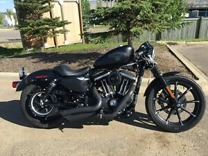 HD Iron 883 with 1200 Engine Kit