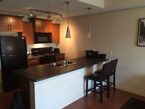 Bachelor apartment available today