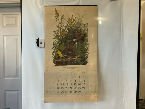 Vintage Northwestern Mutual Life 1948 Audubon Calendar Pages April-December 1948