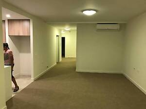Brand New Carpets from a brand new unit Westmead Parramatta Area Preview